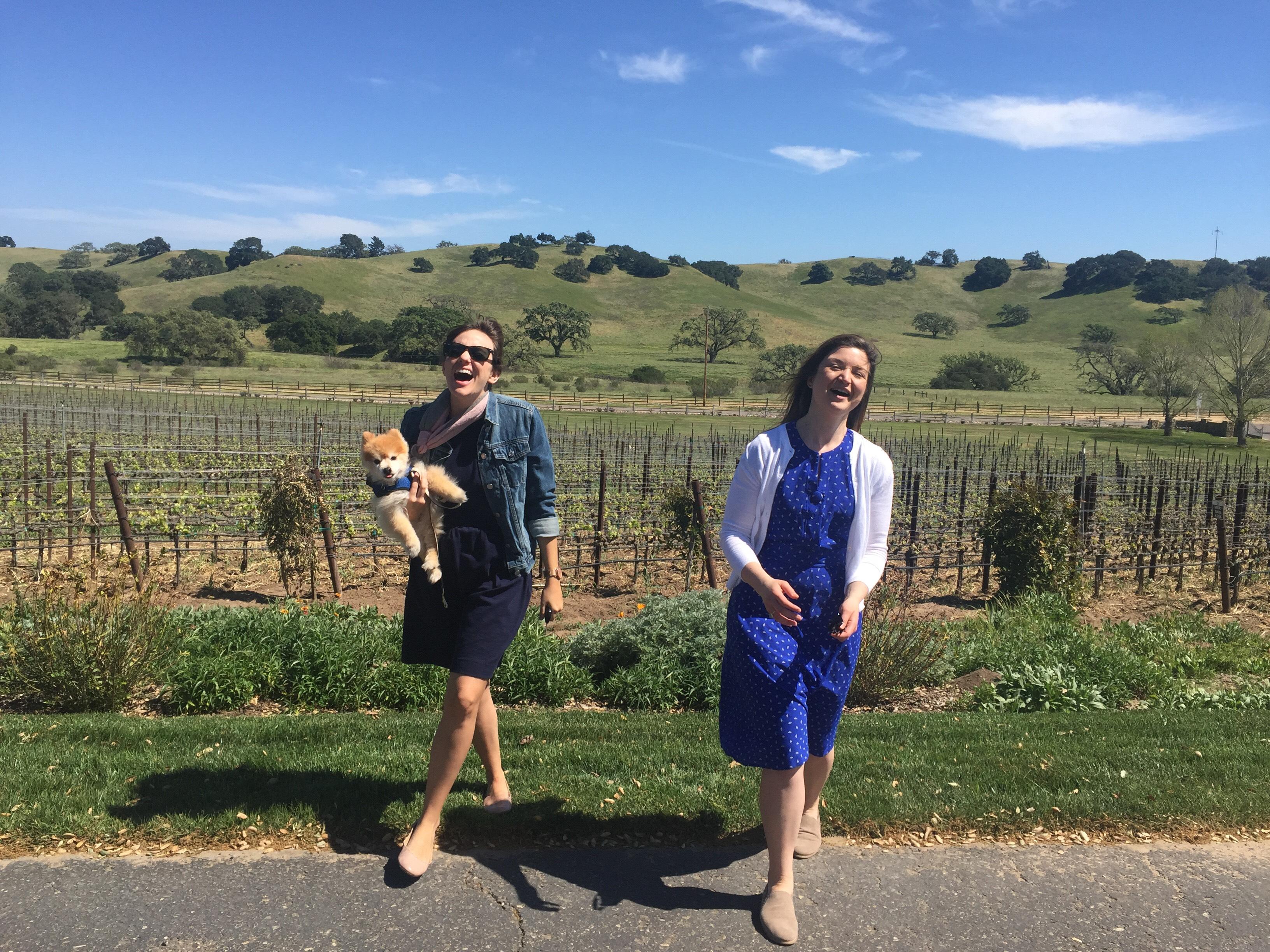 Rusack Winery, Santa Ynez Valley